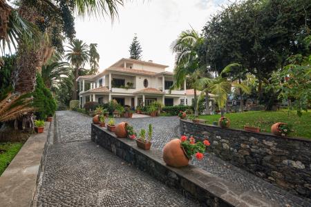 Finca, Santo António, Funchal